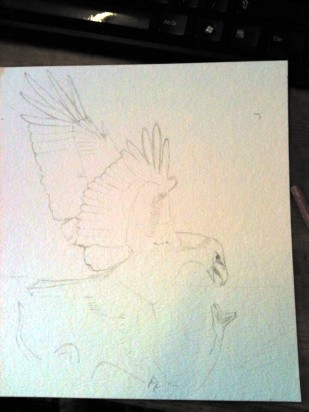 Start the next bird ... eagle I think this time
