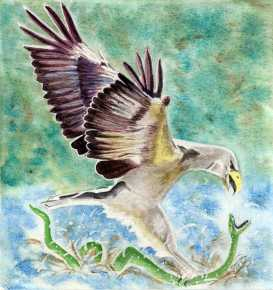 Finished the water colour .. can I say the eagle has landed?